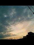 061205_1624~0002.jpg